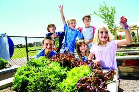Swigert students and spring lettuce. Back: Joseph Norman, Finn Woolf, Zander Eliason. Front: Blake Thiel, Cecelia Harper, Kate Woolf.